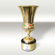 TVP Sport będzie transmitować rozgrywki Pucharu Włoch