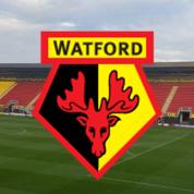 Oficjalnie: Nigel Pearson trenerem Watford