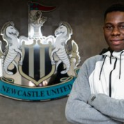 Oficjalnie: Yannick Toure w Newcastle United