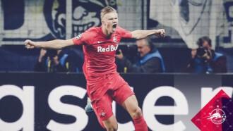 Liga Mistrzów: Haland Show! Grad goli w Salzburg – Genk
